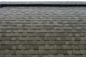 roofing contractor circle pines mn